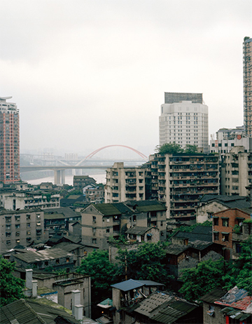 UNDER THE GINGKO TREE: THE TIDES OF CHONGQING