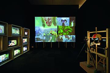 Taro Izumi, Caramel, 2013, Video installation, dimensions variable PHOTO: Watanabe Osamu Courtesy of Take Ninagawa, Tokyo and Mori Art Museum, Tokyo