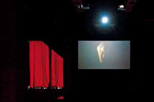 在展览现场的某一个瞬间,作品《顾尔德》的影像内容同时出现在三个投影屏幕内:只看到患白化病男子的头部和头部上方的白色手套,那头颅仿佛被没有身体的手操控着,不停地前后摆动。让人想起已逝加拿大天才钢琴师顾尔德演奏时独特的摇摆习惯。现场伴随着加速播放且有着混音的莫扎特C大调第十号钢琴奏鸣曲。