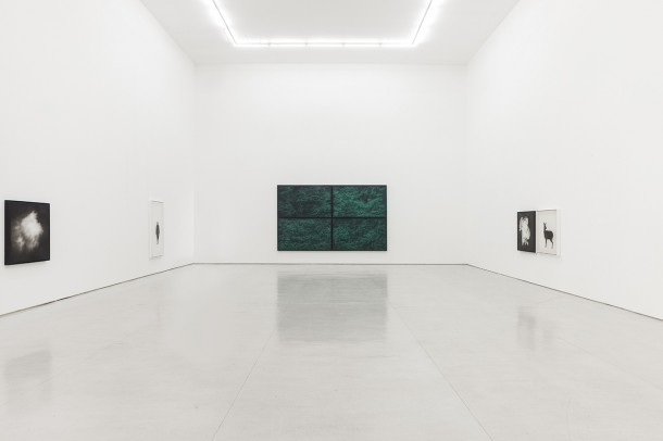 """""""Xie Fan: Back to the Footlights Tomorrow,"""" White Space Beijing, 2014. Courtesy of White Space Beijing."""