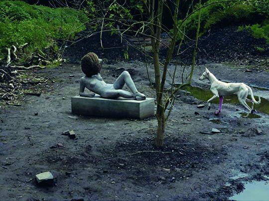 《耕种》,2011-2012年,活物和死物,做的和没做的