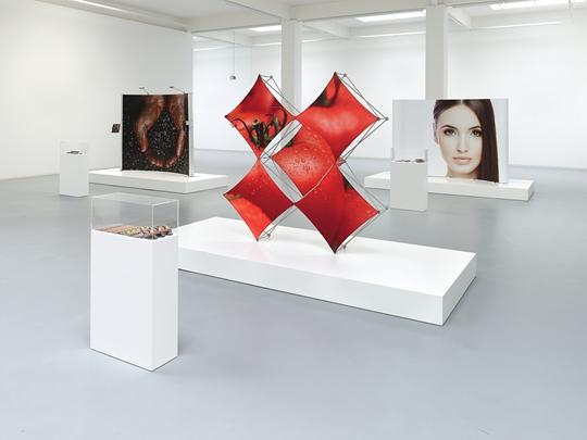 "View of ""Basin of Attraction,"" 2013 Bonner Kunstverein Courtesy the artist and Société, Berlin PHOTO: Simon Vogel"