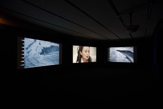 与艾萨克•朱利安,《万重浪 (三屏幕版)》,2010年,三频道录像装置,49分41秒  图片来源:艺术家、伦敦Victoria Miro画廊、悉尼 Roslyn Oxley 9画廊及圣保罗Galeria Nara Roesler画廊