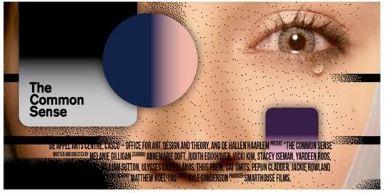 《常识》网络版海报,2014年