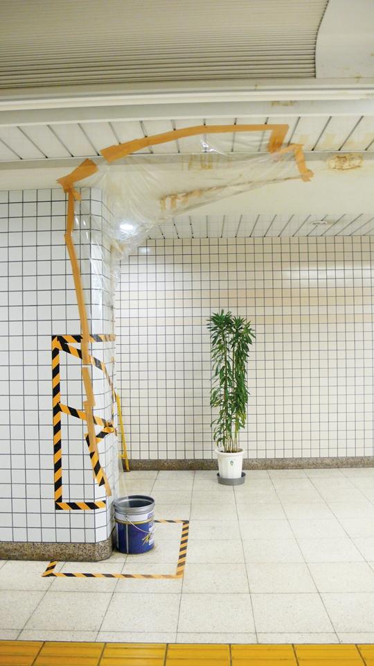Moray Moray Tokyo (Water Leak Tokyo): Field Work 2009-2015, photography