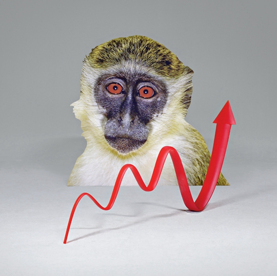 《激活的图式(狨猴)》,2014年,图像剪贴、聚氨酯、铁,200×183×35厘米(狨猴)、106×220×25厘米(箭头)