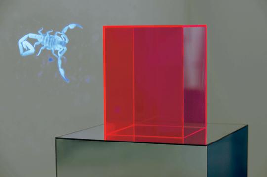 苏珊·M·温特灵,《天蝎座洗礼》,2014年 高清录像,2分钟循环,两根镜柱,尺寸可变