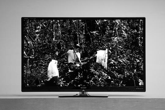 《人物习作》 2012年 胶合板、赤陶、单频黑白高清影像 37分钟