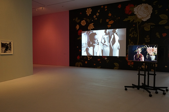 About the Unkown Girl-Ma Sise, 2013-2015, Films, Photographs, Installations, etc. Exhibition view in CCA Singapore 2013 Courtesy of ShanghART Gallery
