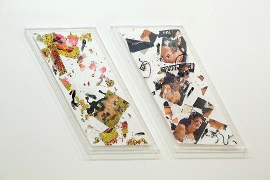 《无题(范思哲/H&M白色小号)》 ,《无题(Hollister白色小号2)》 ,2015年 ,棉花、购物袋、苍蝇、蟑螂、鸽子羽毛、颜料、聚氨酯树脂、合成纤维、灰尘 ,每件111.76 × 53.34 厘米 × 9.53毫米