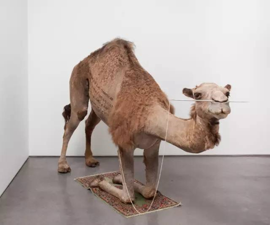 Camel, 2012 Vue de l'exposition « Bâton-Serpent III: Spur Track To The Left », 2016, Power Station of Art, Shanghai Source : PSA
