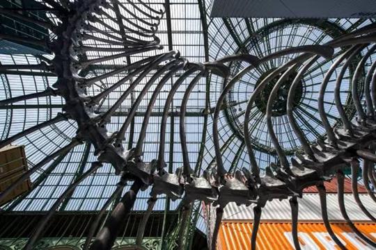 Vue de l'exposition « L'Empire » ,   Source : ADAGP, Paris